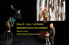 Ali / Description d'un combat – Laval – 20/01/2018
